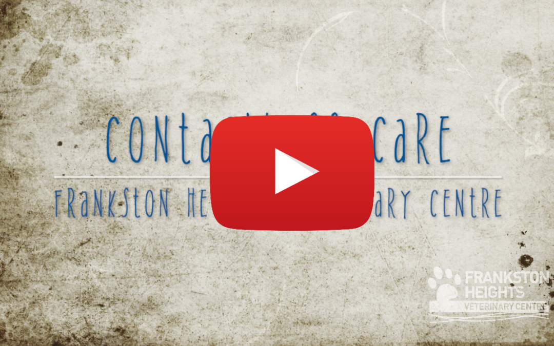 Title card for video explaining our contactless care programme indicating that